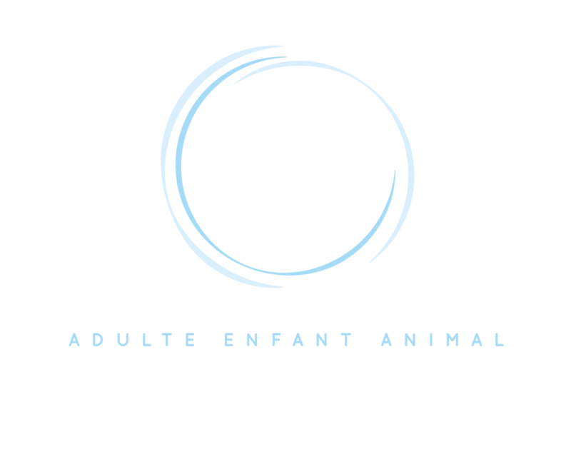 logo lisa de wever neurotraining